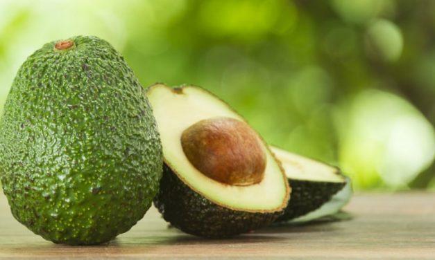🥑 Propiedades y beneficios medicinales increíbles de la semilla de aguacate 🥑