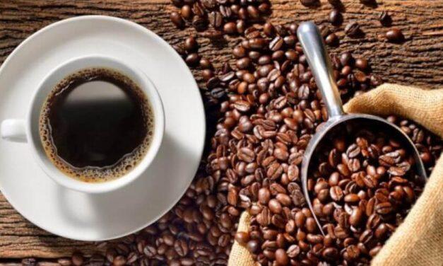 😮 Fedeagro: en 2019 la producción de café cayó en un 50% 😮