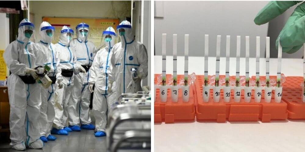 cientificos-crearon-un-metodo-que-detecta-rapido-el-coronavirus-experimento-prueba-movidatuy.com