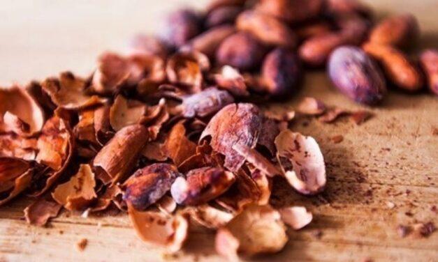 ✅ Beneficios y usos de la cascarilla de cacao para la salud ✅
