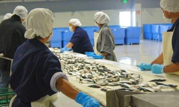 ✅ El Plan Pescado 200 se activará en Semana Santa ✅