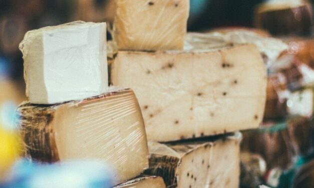 ✅ ¿Qué se necesita para transportar queso en Venezuela? ✅