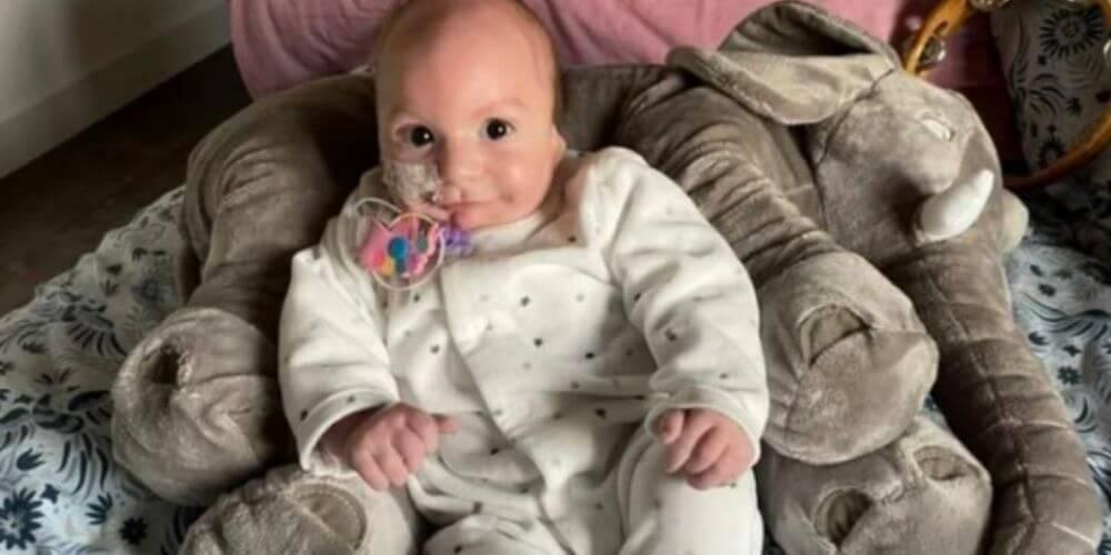 padres-desesperados-quieren-conseguirle-dos-orejas-a-su-bebe-margot-conectada-a dispositivo-movidatuy.com