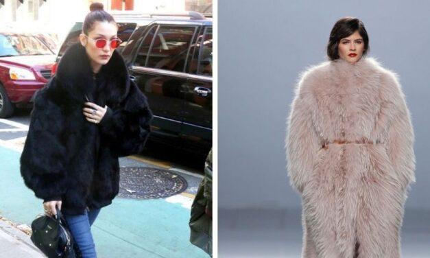✌️ Israel prohíbe el uso de pieles de animales para la industria de la moda ✌️