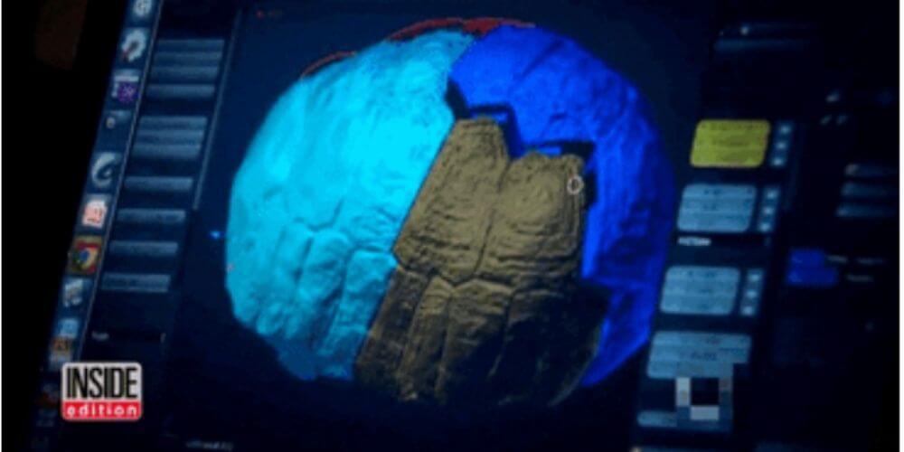 adorable-tortuga-recibio-el-primer-caparazon-del-mundo-impreso-en-3D-diseño-computarizado-movidatuy.com